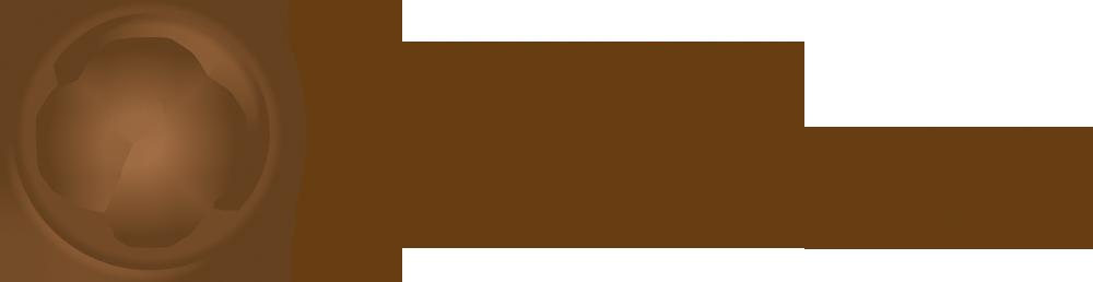 CZS-logo-poziom-1000px